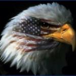 Гонка вооружений в Америке